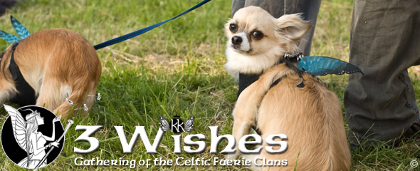 3WFF 2015 doggy banner slider 3 Wishes Faery Fest 2015   Celtic Fairy Festival