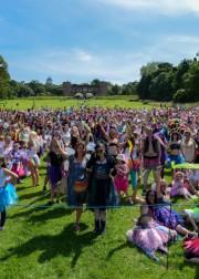 3WishesworldRecord2014 FestivalAwards 180x252 3 Wishes Faery Fest 2015   Celtic Fairy Festival